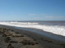 The endless shore