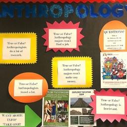 Bulletin board with anthropology flyers hanging on it