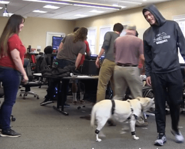 The spring 2020 game collaboration class works on motion capture of a dog in this file photo.