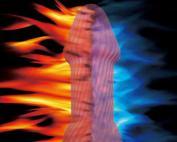 Heated dildo