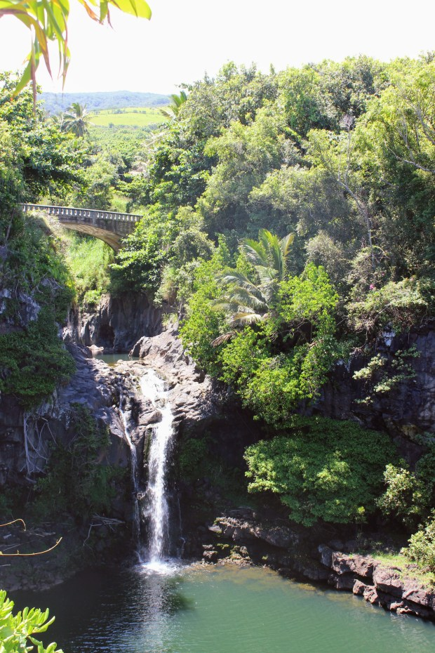Road to Hana 22