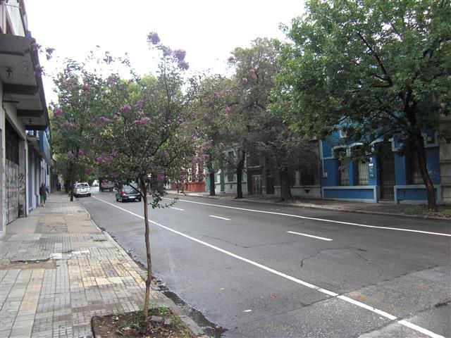 Montevideo 5