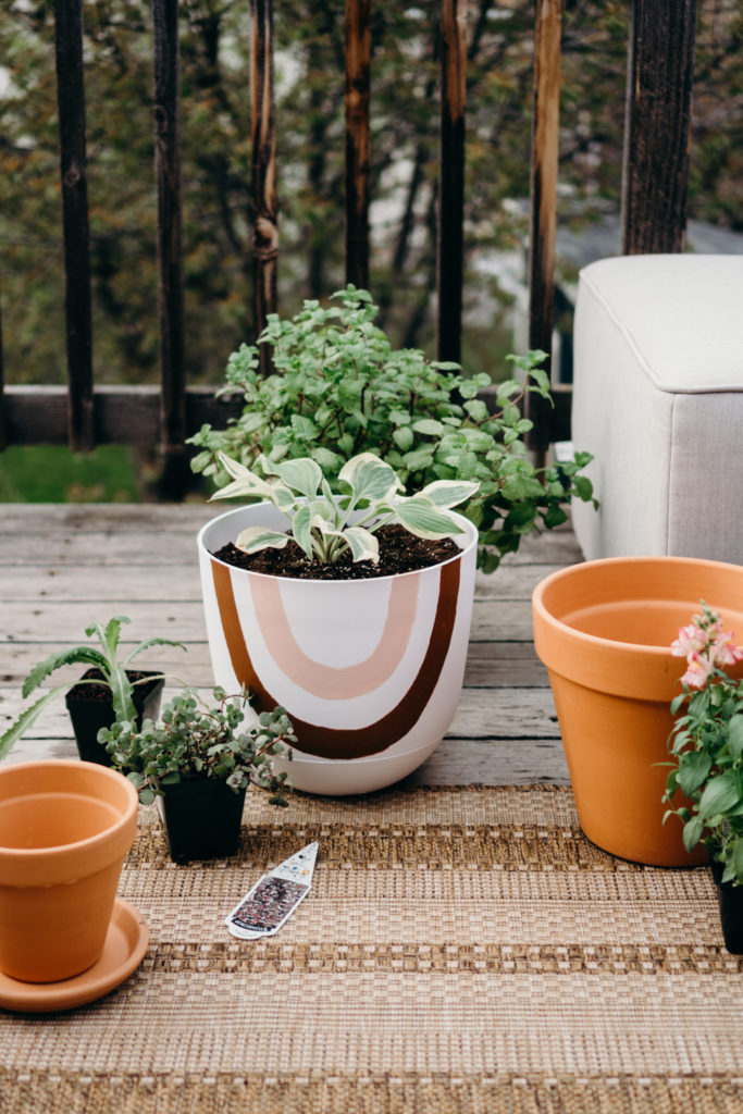 Handpainted Outdoor Planters || Outdoor deck || Outdoors Home Decor
