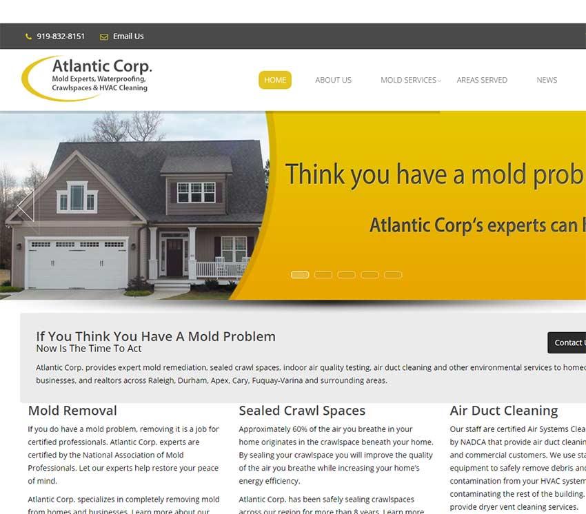 Mold Remediation Company Website Design
