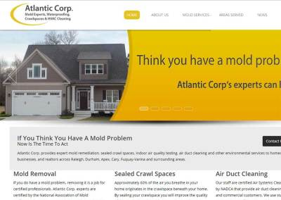 Mold Remediation Company Website Design