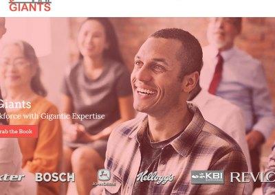 Corporate Trainer Website Design