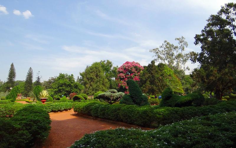 Daya Bhat  – Three Poems