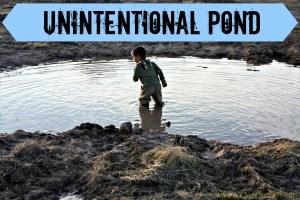 unintentional pond