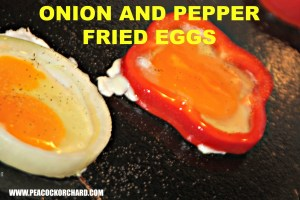 Eggtastic Tuesday- Simple Onion and Pepper Fried Eggs