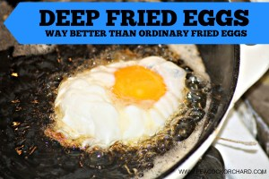 Eggtastic Tuesday- Deep Fried Eggs