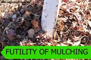 Futility of Mulching
