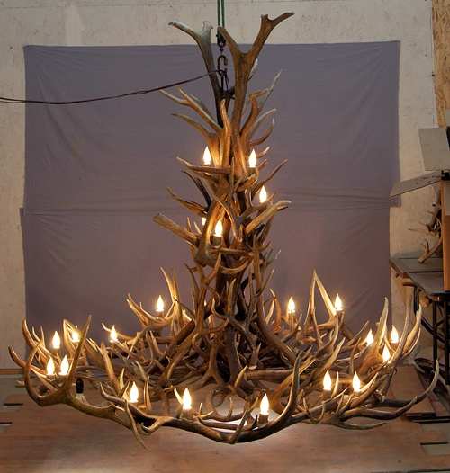570-XL mt elbert elk mule deer antler chandelier