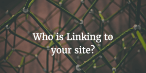 What is a Backlink Profile?