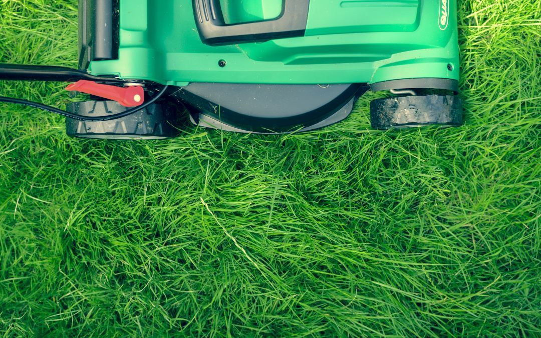 Lawn Care Do's and Don'ts