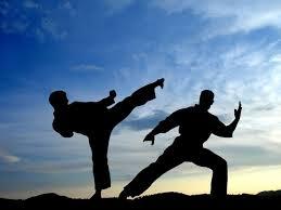 martial artists