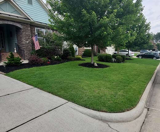 Sod Installation in Cary Park