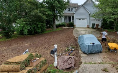 How Much Will A Successful Sod Installation Cost In 2021?