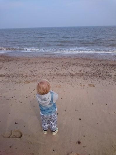 henry beach