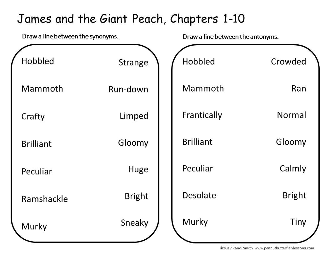 James And The Giant Peach Word Detective A Literature