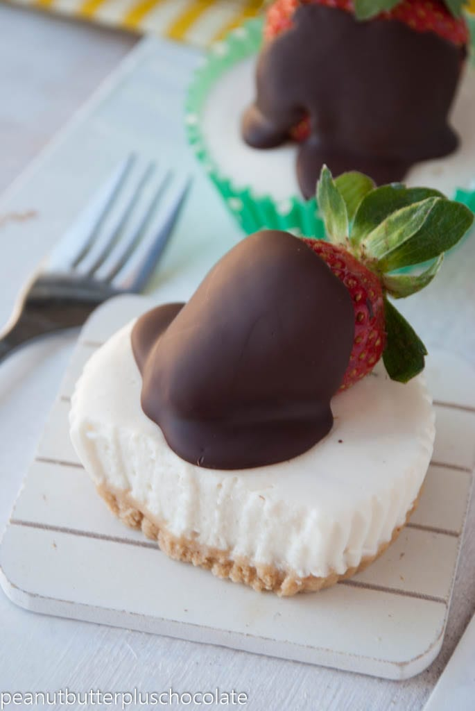 No Bake Mini Protein Cheesecakes with Chocolate Covered Strawberries