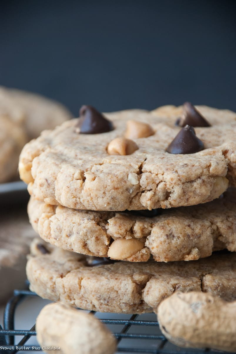 Healthy Peanut Butter Protein Cookies