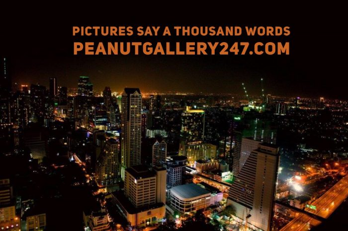 Pictures say 1000 words - PeanutGallery247
