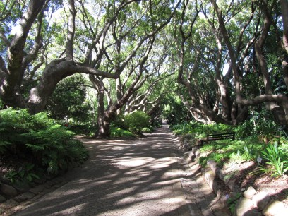 Things to do, places to see - Kirstenbosch Gardens - PeanutGallery247