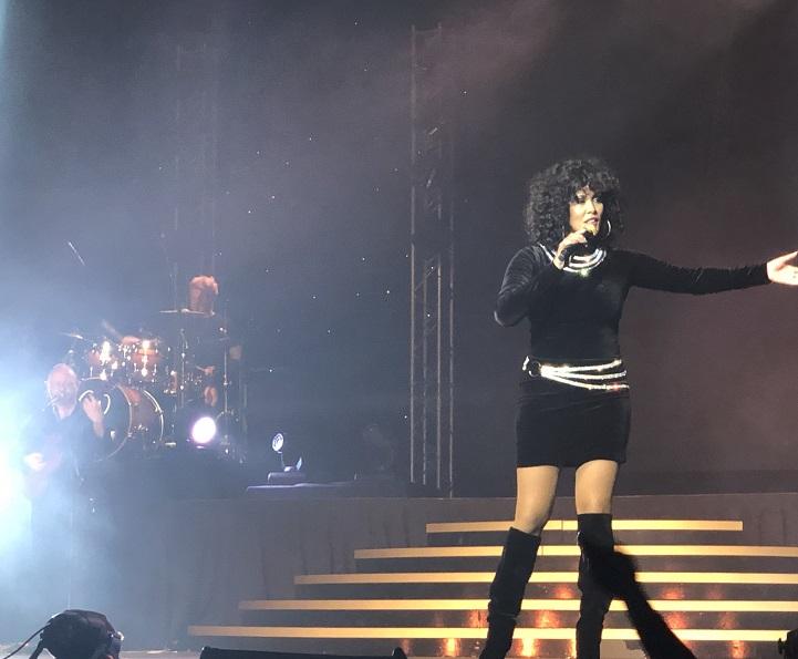 The Whitney Houston Show – Review