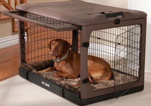 Use a dog crate if necessary