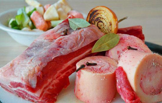 Best Food for Dachshund