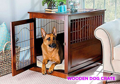 Best Crates for Dogs