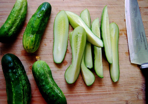 Cucumber for Dogs