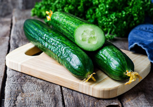 Can Dogs Have Cucumbers