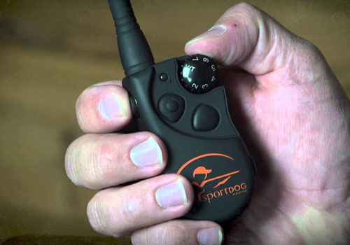 SportDOG SD-425 review