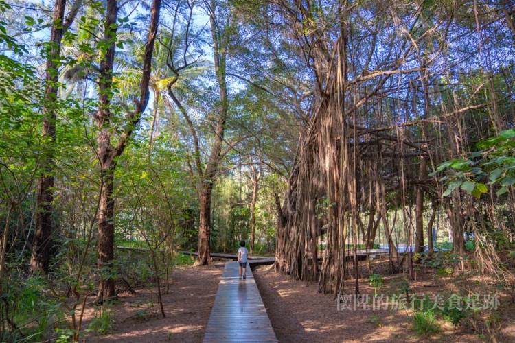 台南海灘|漁光島最浪漫的這條步道,讓你從森林一路走到月牙灣,同場加映漁光「神秘鎖鏈」&「海中堤防秘境」