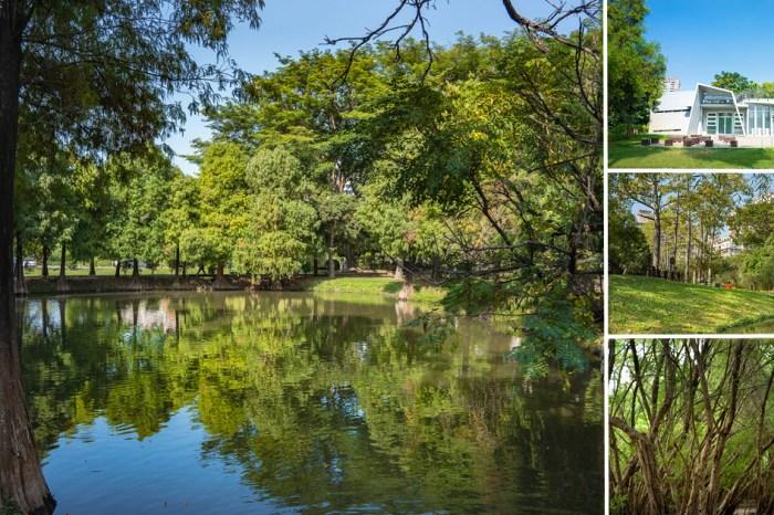 台南公園|藏在城市中的美麗森林,從樹林走到湖泊,探索自然生態之美|巴克禮紀念公園