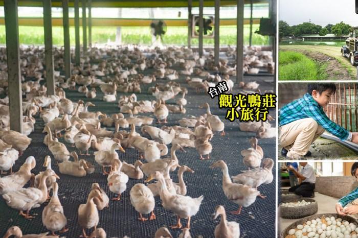 台南鴨莊|到養鴨人家的家玩耍,親手做顆鹹鴨蛋,體驗親子農村樂,還有好玩戶外遊樂設施|台南親子景點