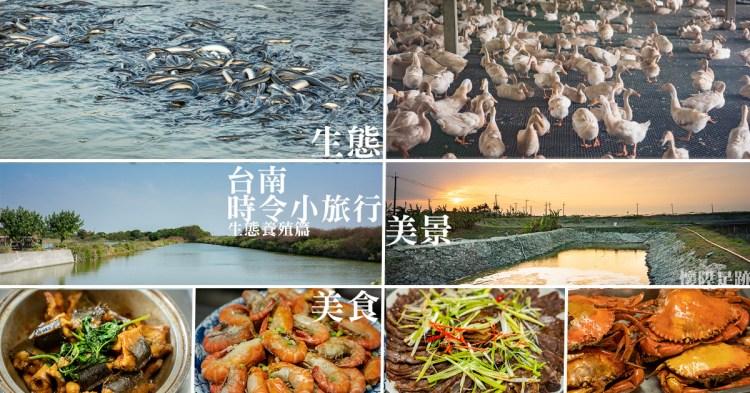 台南時令小旅行 來一趟生態養殖小旅行,欣賞生態品嚐美食,感受這片土地的多樣性與美好!亮哥生態養殖場/溪南休閒塭釣場/台南鴨莊