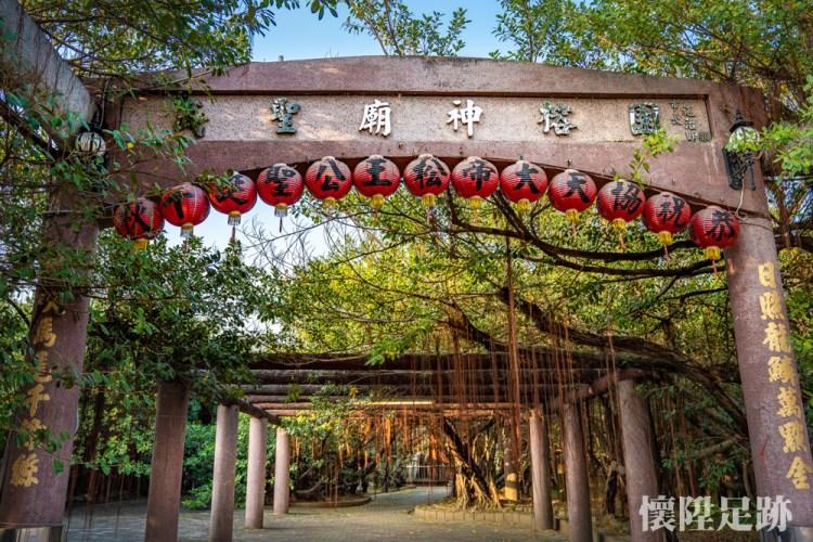 50年前風靡台南的景點,至今是什麼模樣?只有一棵樹卻長成一片森林的壯闊奇景|十二佃神榕