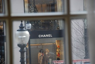 Looking at Chanel through the window.