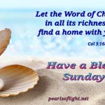 Richness of the Word (BL)