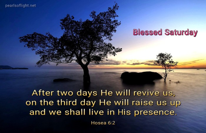 On the third day He will raise us up (BL)