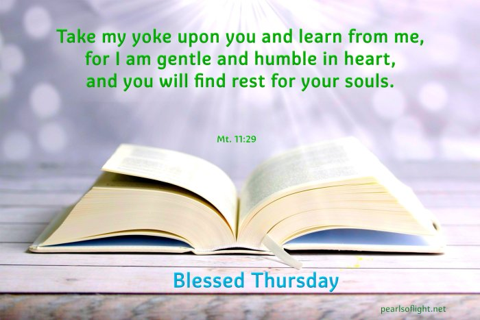 Take my yoke upon you and learn from me, for I am gentle and humble in heart,