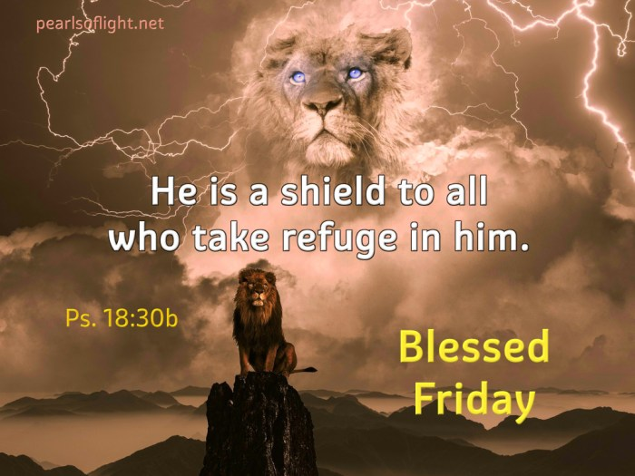 He is a shield to all who take refuge in him.