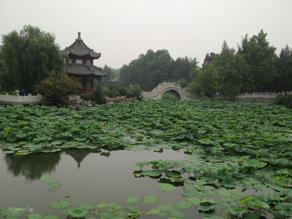 Baoding China Lotus Gardens