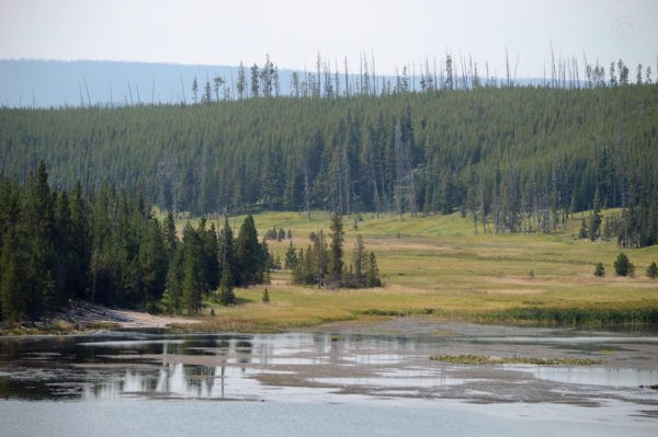 Yellowstone National Park Visitors Guide