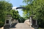 Memphis History through Elmwood Cemetery pebblepirouette.com #memphis #tennessee #elmwoodcemetery #memphishistory
