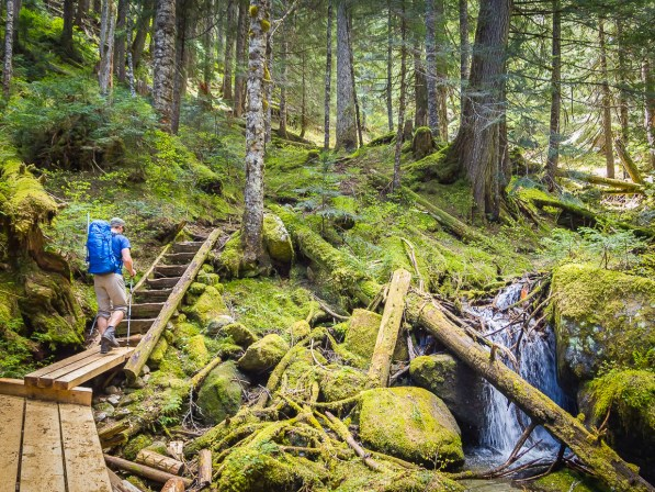 The moss filled wonderland of SW BC