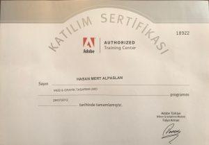 Bilge Adam Web & Grafik Tasarım eğitimi Katılım Sertifikası