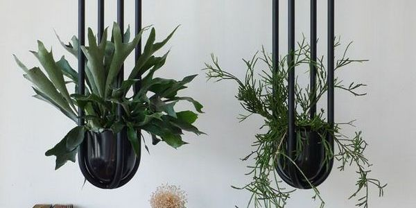 40+ Industrial Hanging Plant Pot Ideas